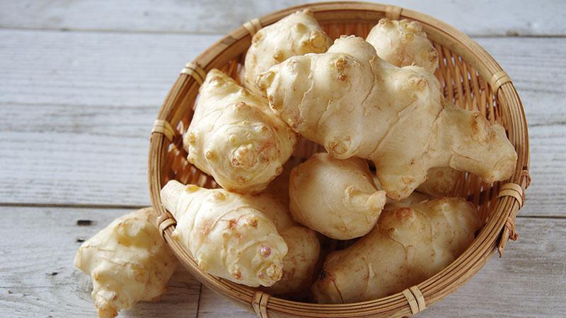 菊芋の写真